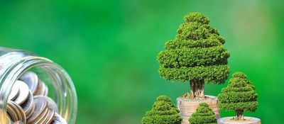 Inversión ambiental como cambio de paradigma en Paraguay