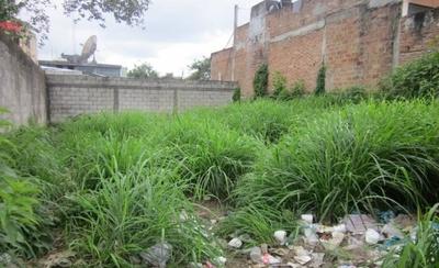 HOY / Dengue: propietarios de inmuebles abandonados en la mira, se exponen a multas millonarias
