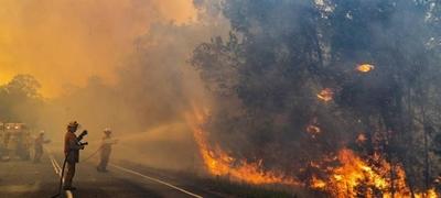 HOY / Tenistas donan casi 500.000 dólares como ayuda por los incendios