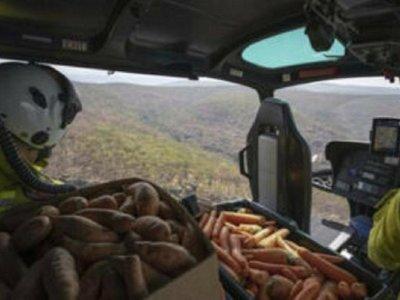 Lanzan zanahorias y batatas desde el cielo
