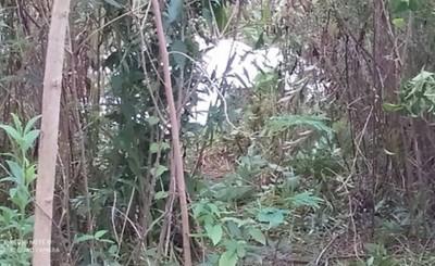 Identifican a las cuatro víctimas encontradas en Pdte. Franco