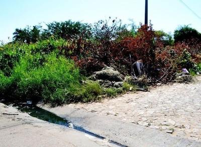 Intendenta pide a la Fiscalía acciones penales contra personas por no limpiar baldíos