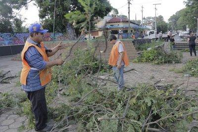 Intendente de Ñemby iniciará campaña para que sean imputados dueños de los terrenos baldíos