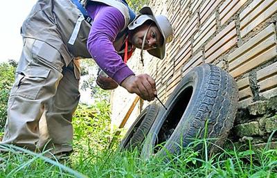 Lucha contra criaderos de mosquitos es tomada como causa nacional en el departamento Central