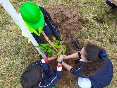 Itaipú entregó 34.000 plantines