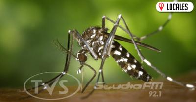 Buscan reducir infestación larvaria en el departamento de Itapúa