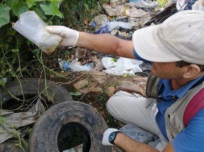 Campaña antidengue: Fiscalía anuncia imputaciones contra dueños de baldíos en San Pedro