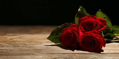 Etapas del Duelo: Cuando muere la persona que amo
