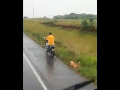 Motociclista arrastra a un perro en Misiones y causa indignación
