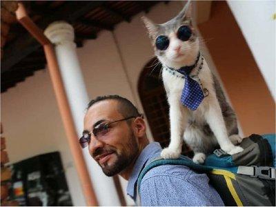 El gato mochilero y la gata Clarita se conocieron