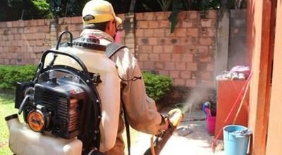 Senepa: Advierten que no son los insecticidas sino la limpieza lo que mejor combate al dengue