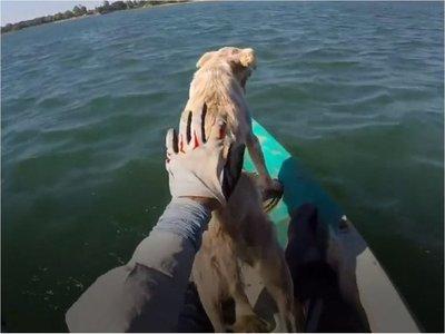 Rescate de perro en Ayolas se vuelve viral