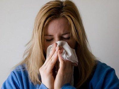 Dispositivos portátiles posibilitan predicción de gripe en tiempo real