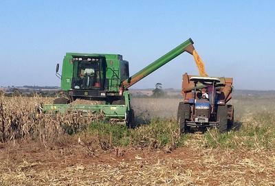 Inició la cosecha de soja con muy buen rendimiento por hectárea