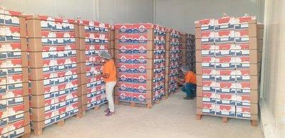 Paraguay realiza primer envío de banana a Chile