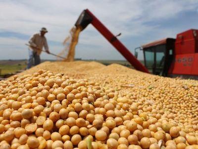 Destacan resultados en cosecha de soja