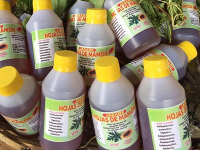 Venden jarabe de hoja de mamón para chulear al dengue