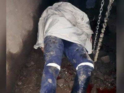 Cayó dentro de una máquina trituradora y murió