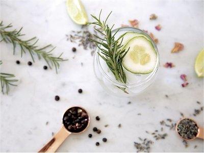 El regreso del gin and tonic