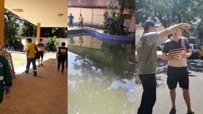 HOY / Intervienen vivienda en Recoleta con múltiples criaderos de mosquitos