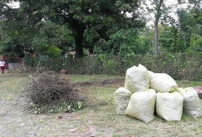 Municipalidad de Pirayú ofrece recolección de basura gratuita en la lucha contra el dengue
