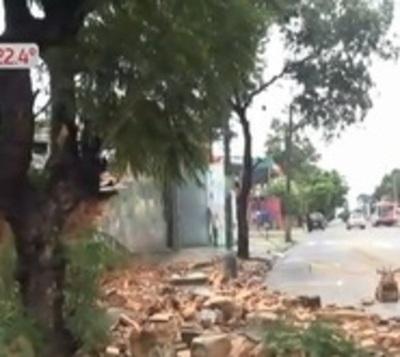 Cede muralla de colegio sobre Colón