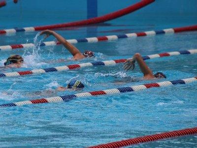 Se viene la edición XX de la tradicional Copa Olimpia de natación