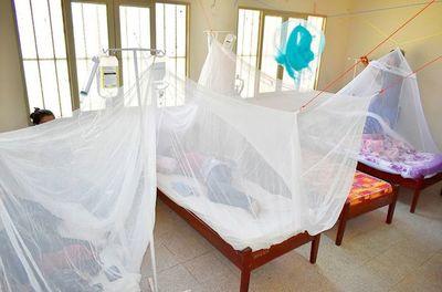 """Dengue es de """"evolución impredecible"""" por lo que insisten en evitar la automedicación"""