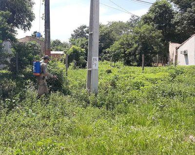 Declaran alerta naranja por dengue en zona sur de San Pedro