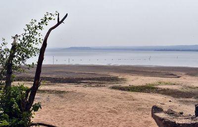 Ninguna acción por el  lago Ypacaraí
