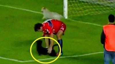 Futbolista maltrata a perritos en campo de futbol de Bolivia (VIDEO)