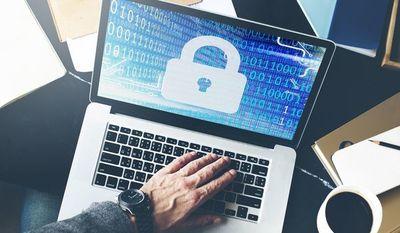 5 Principios fundamentales para la defensa cibernética