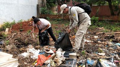 Encuesta emprendida por la UNE revela creencias populares erróneas sobre el dengue