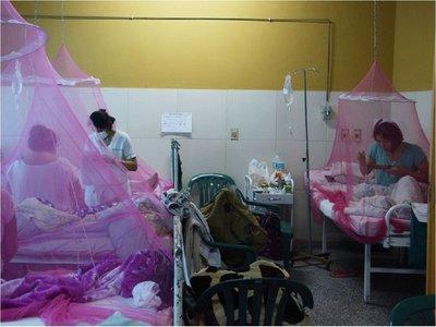 Presentan proyecto para declarar emergencia ante casos de dengue