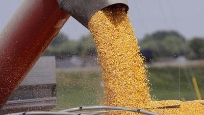 Caída de soja impactó en las exportaciones