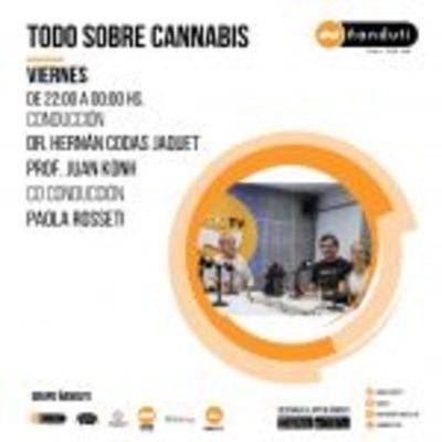 Todo sobre cannabis con Hernán Codas Jaquet, Juan Khon y Paola Nosseti