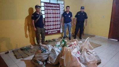 Hallan abandonados 385 kilos de marihuana prensada en Caazapá