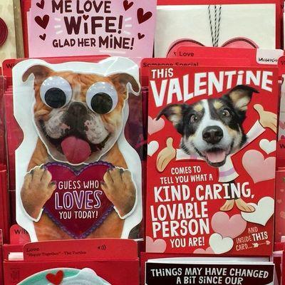 El San Valentín de los perros