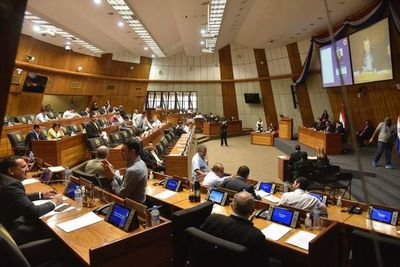 Cámara de Diputados inició sesión para tratar ley financiamiento político