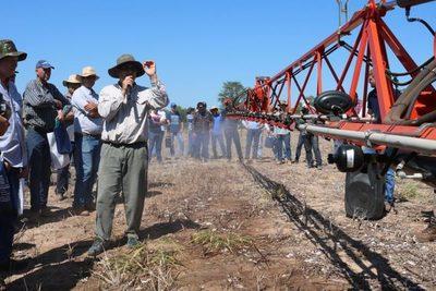 Invitan a productores chaqueños para un taller sobre cultivos de verano sostenibles