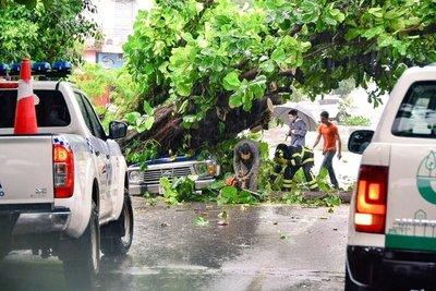 Fuerte temporal en Encarnación deja varios daños materiales