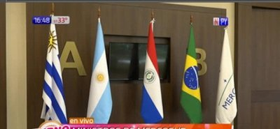 Autoridades del Mercosur se reunen para tratar epidemia del dengue