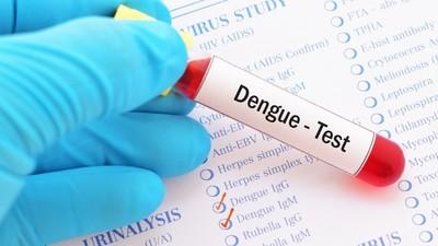 Ofrecen análisis de dengue en la facultad de Química de la UNA