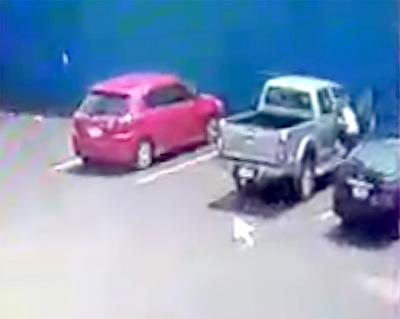 """""""Tortoleros"""" vacían camioneta estacionada en supermercado"""
