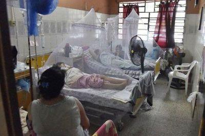 Ya son 20 muertes por dengue y se estudian otros 97 fallecimientos por la enfermedad