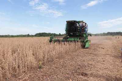 Con elevada rentabilidad inicia periodo de cosecha de soja en el norte