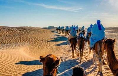 Así era el Sáhara cuando estaba lleno de agua y repleto de peces