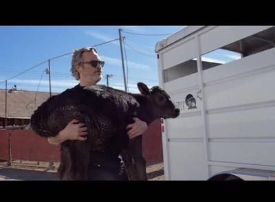 HOY / Joaquín Phoenix rescató a una vaca y a su cría tras ganar el Óscar