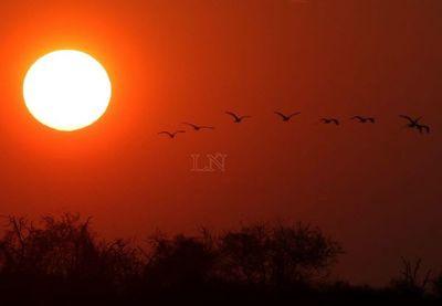 Lunes cálido a caluroso