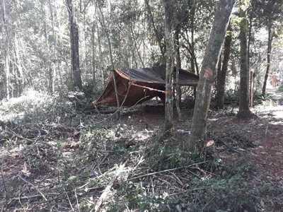 Itaipú denuncia a sin tierras por invasión y tala en reserva forestal